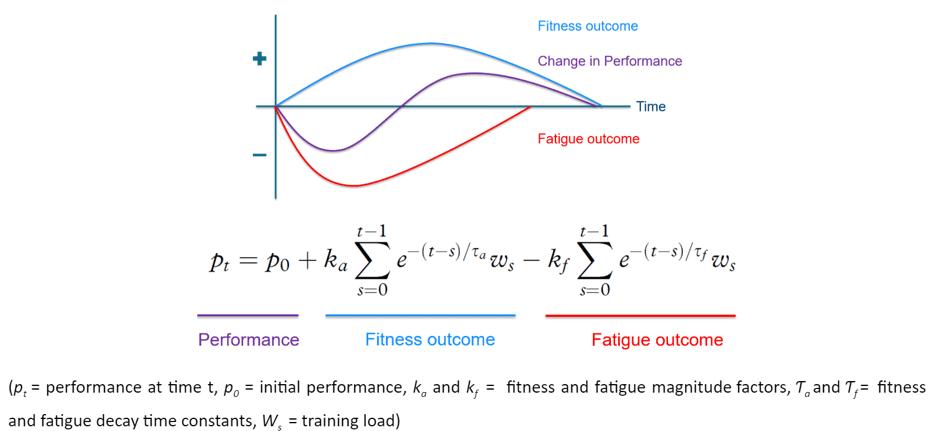 Fitness fatigue components formula